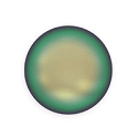 Swarovski 5860 12mm Crystal Scarabaeus Green Coin Pearl (1-Pc)