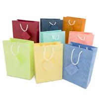 Assorted Pastel 4x6 Tote Gift Bags (10-Pcs)