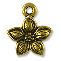 Charm - Star Jasmine 14mm Pewter Antique Gold Plated (1-Pc)