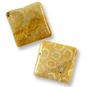Fossil Coral Square Beads 20mm (4-Pcs)