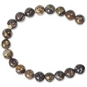 Turritella Agate 6mm Round Beads (8
