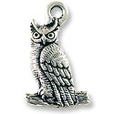 Owl Charm 22x14mm Pewter Antique Silver Plated (1-Pc)
