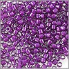 Miyuki Delica Seed Bead 11/0 Color Lined Grape (3 Gram Tube)