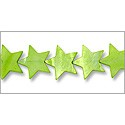 "Shell Beads Star 25mm Green (16"" Strand)"