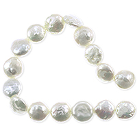 Freshwater Coin Pearl White 10-11mm (16