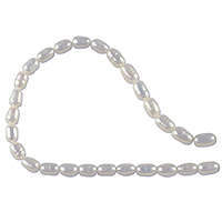 Freshwater Rice Pearls White 3-3.5mm (16