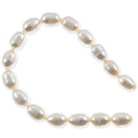 Freshwater Rice Pearl Creme 8-8.5mm (16
