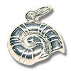 Sterling Silver Nautilus Shell Charm 13mm (1-Pc)