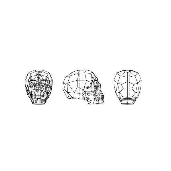 e6947a8faa0ce 50% Off Sale on Swarovski Crystal Skull Beads 5750 at JewelrySupply.com