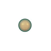 Swarovski 5810 2mm Crystal Iridescent Green Round Crystal Pearl (Strand of 100pcs)