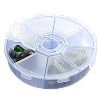 Plastic 8-Compartment Organizer Box
