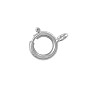 Spring Ring Clasp 6mm 14k White Gold Open Ring (1-Pc)