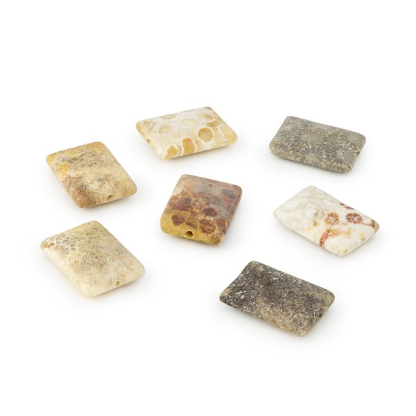Fossilized Coral Rectangle Beads 25x18mm (4-Pcs)