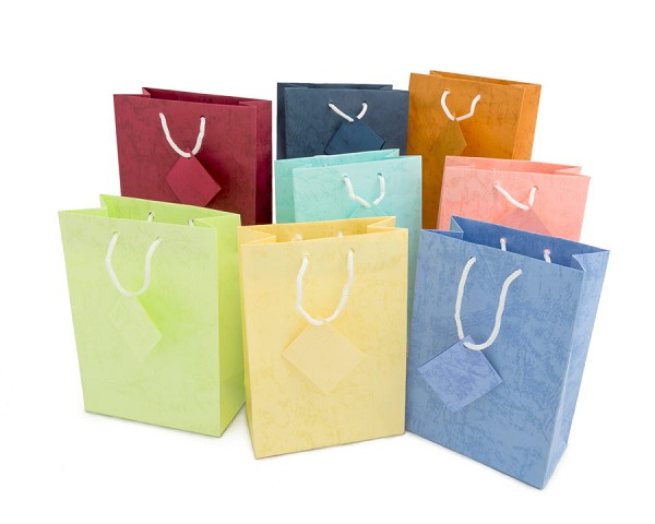 Assorted Pastel 4x6 Tote Gift Bags (20-Pcs)