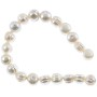 "Freshwater Potato Pearl Irregular White 7-8mm (16"" Strand)"