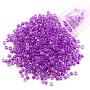 Miyuki Delica Seed Bead 11/0 Color Lined Dark Lilac (3 Gram Tube)