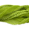 Lime Silk Fairy Ribbon (36 Inches)