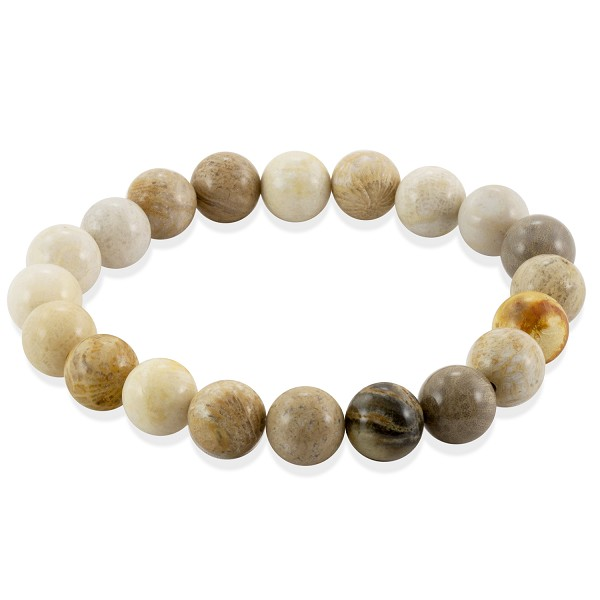 Fossil Coral Bead 7-½ Inch Stretch Bracelet (1-Pc)